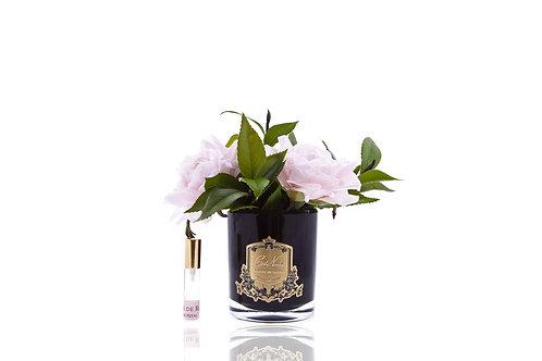 Cote Noire Signature Diffuser: Pink English Roses