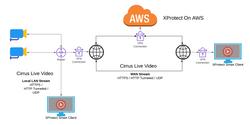 VPN + Local/Remote Clients