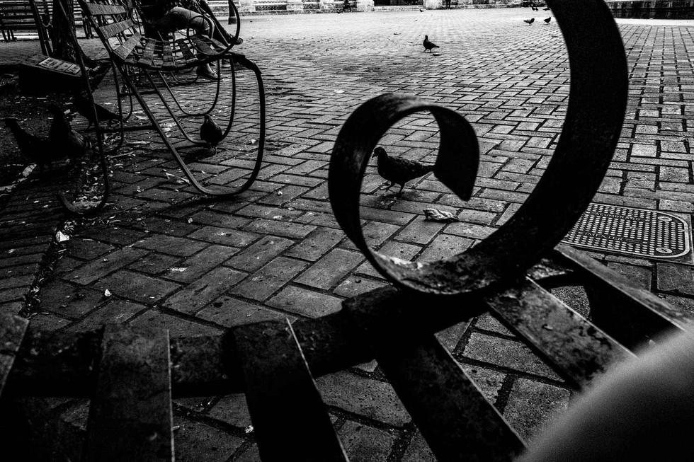matias-boncosky-fotografo-freelance-389-