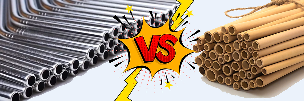 Que choisir: paille en Inox ou Paille en Bambou