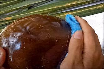 hydratation du bol en coco avec huile de coco