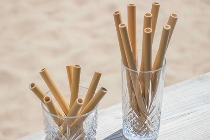 Paille en Bambou Short drink ou Long Drink