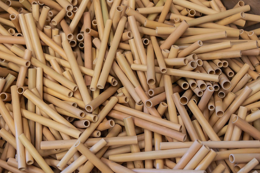 Paille en Bambou personnalisable, réutilisable et 100% naturelle