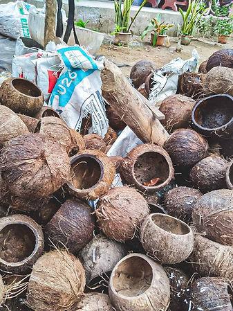 Noix de coco,destinées à être jetées, que nous récupérons pour en faire des bols tendances.