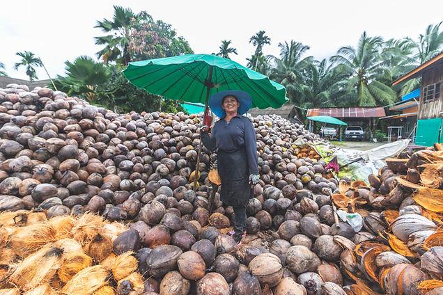 Fabrication bol en coco au Vietnam