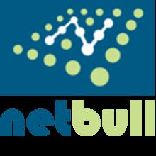 Netbull logo