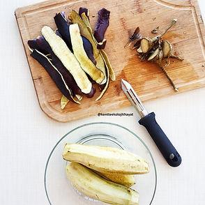 patlıcan-kabuğu-cipsi1.jpg