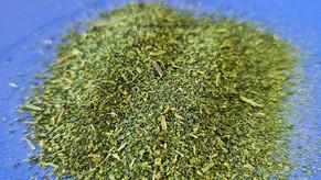 Ispanak tozu nasıl yapılır, nasıl kullanılır?