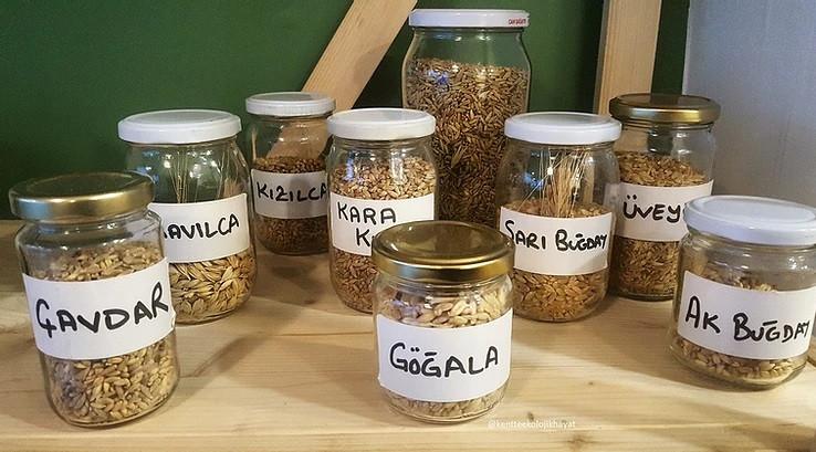 Atalık tahıllar @Eppek dükkanı