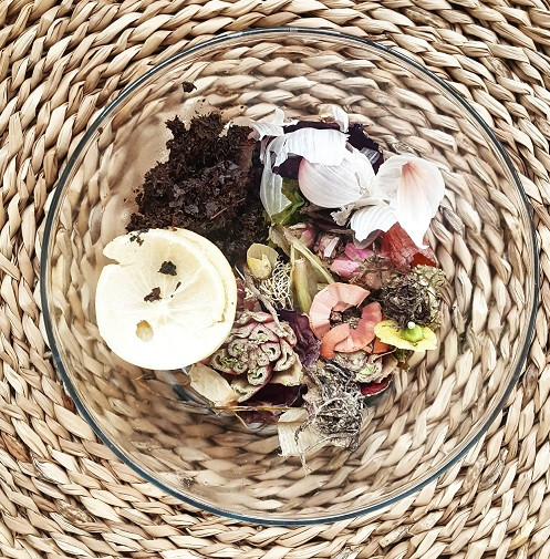 Organik atık - kompost