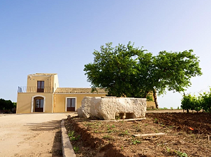 Santa Tresa winery.png
