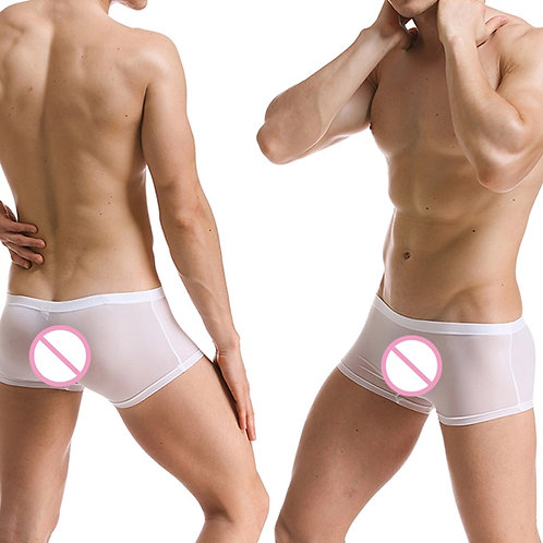 Soft Sexy Super Thin Mens Underwear Ice Silk Boxers Shorts Transparent Low-Rise