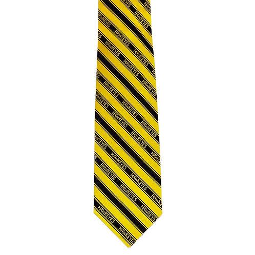 Iowa Youth Tie