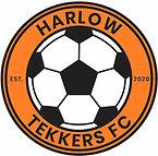 Harlow Tekkers FC Badge mod orange.jpg