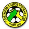 Corringham Cosmos.jpg
