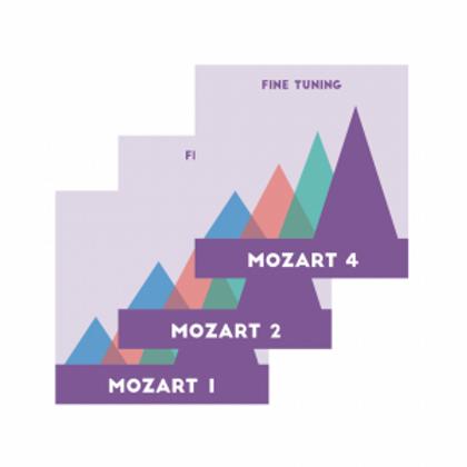Fine Tuning Mozart Mountain