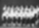 1959 d.png