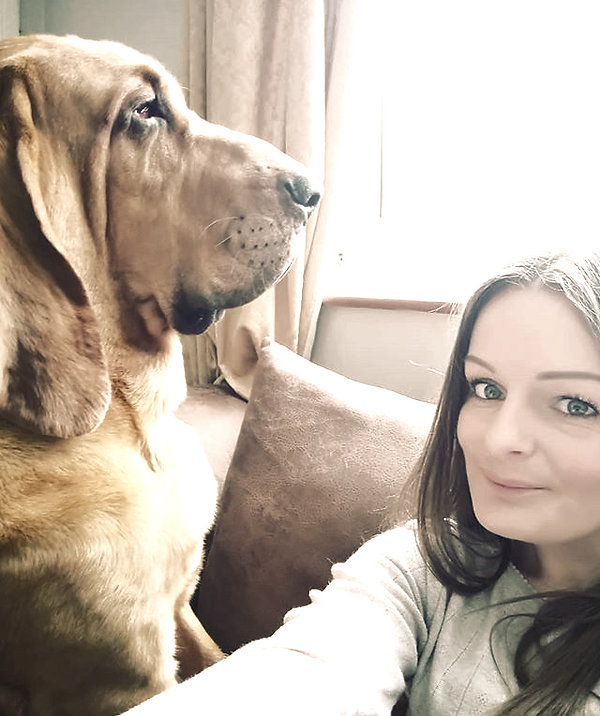 Mum loves a selfie 😒_#bloodhound #Hound