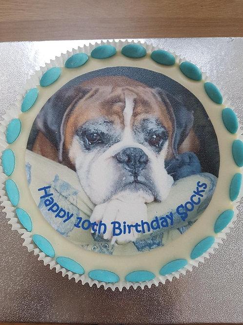 7 Inch Photo Cake
