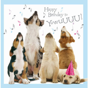 Howling Pups Birthday Card