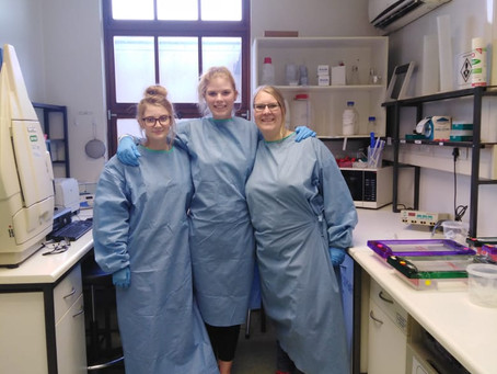 Dutch PhD student Judith Oymans visits the Centre for Viral Zoonoses in Pretoria, South Africa