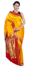PNGPIX-COM-Wedding-Saree-PNG-Transparent