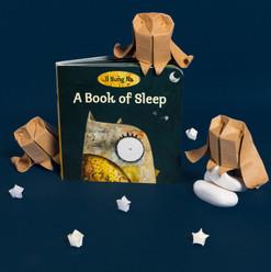 A Book of Sleep ISBN 9780375866180