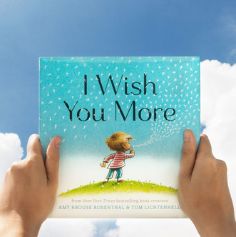 I Wish You More ISBN 9781452126999