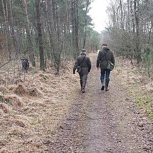 Bennie and Jasper 2 walk