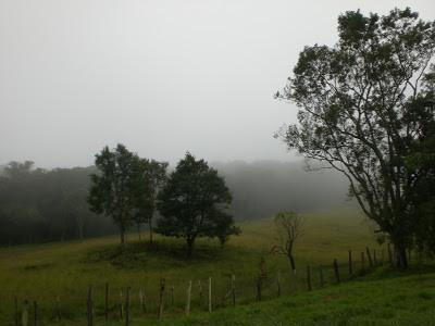 Dia da chegada: nublado e chuvoso. Clima perfeito para o recolhimento,  para meditar...