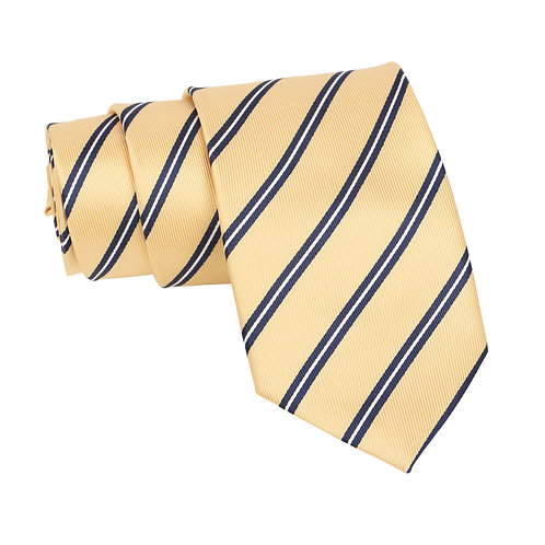 Barata Formal Ties For Men, Gold Tie Formal Broad (Gold8.8cmG1)