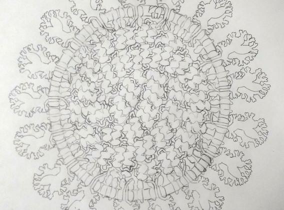 SARS Sketch