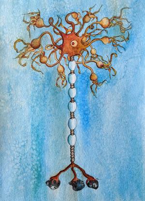 Ocean Neuron