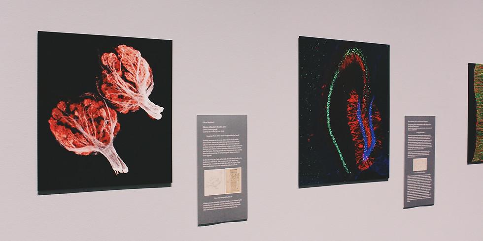 Science-Art Exhibition