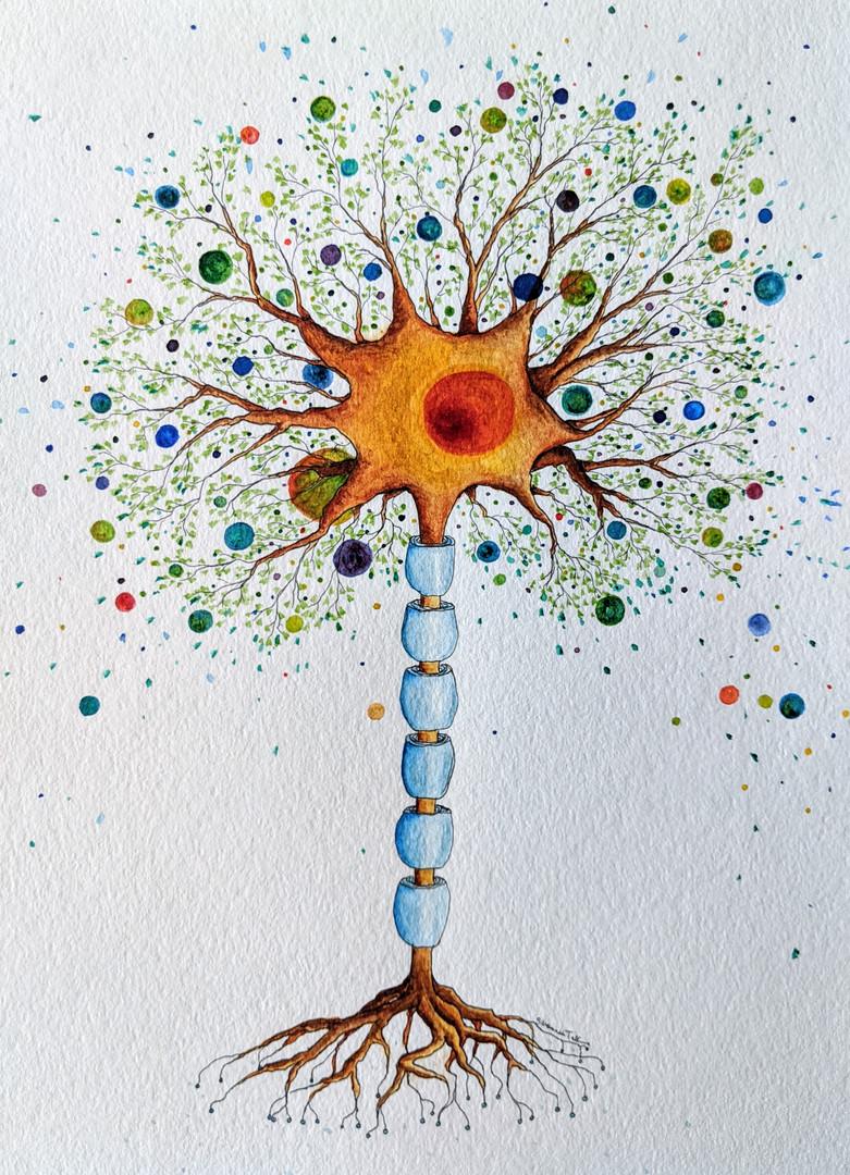 Neuron Tree