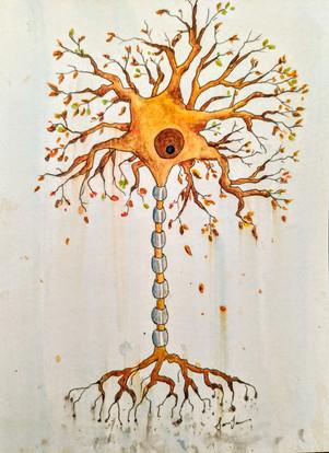 Aging Neuron