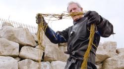 Seaweed harvesting Mike Webb.jpg