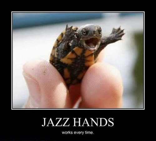 Jazz Hand Turtle wants to tap dance with you!