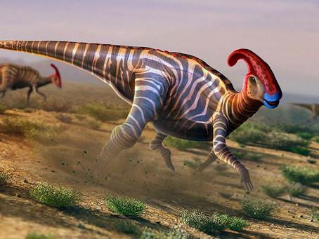 An Ode to Parasaurolophus