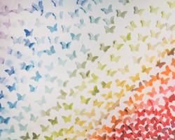 F-14 Butterfly Rainbow