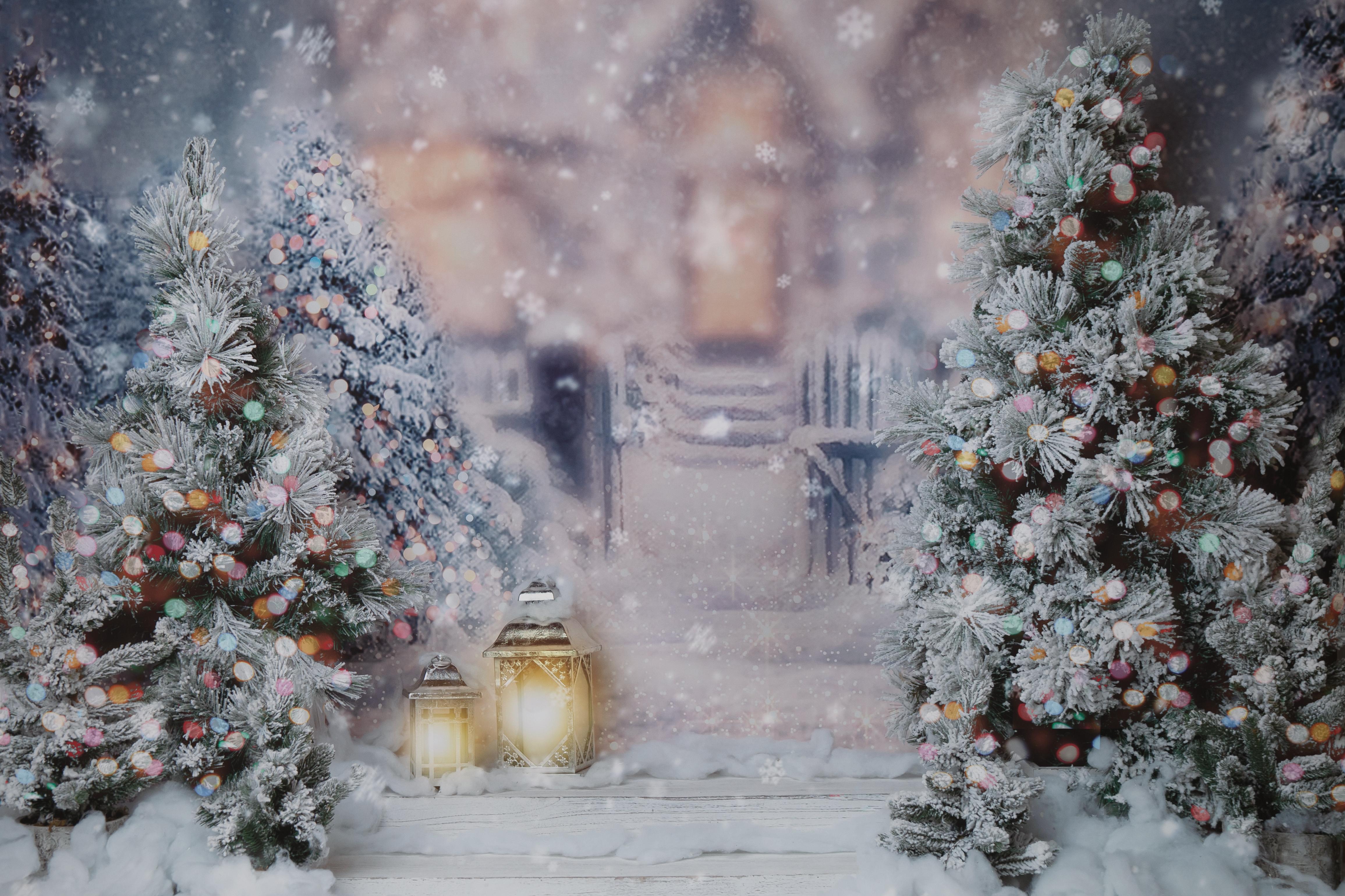 Winter twinkle