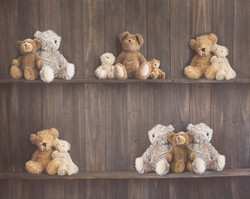 F-20 Teddy Shelves