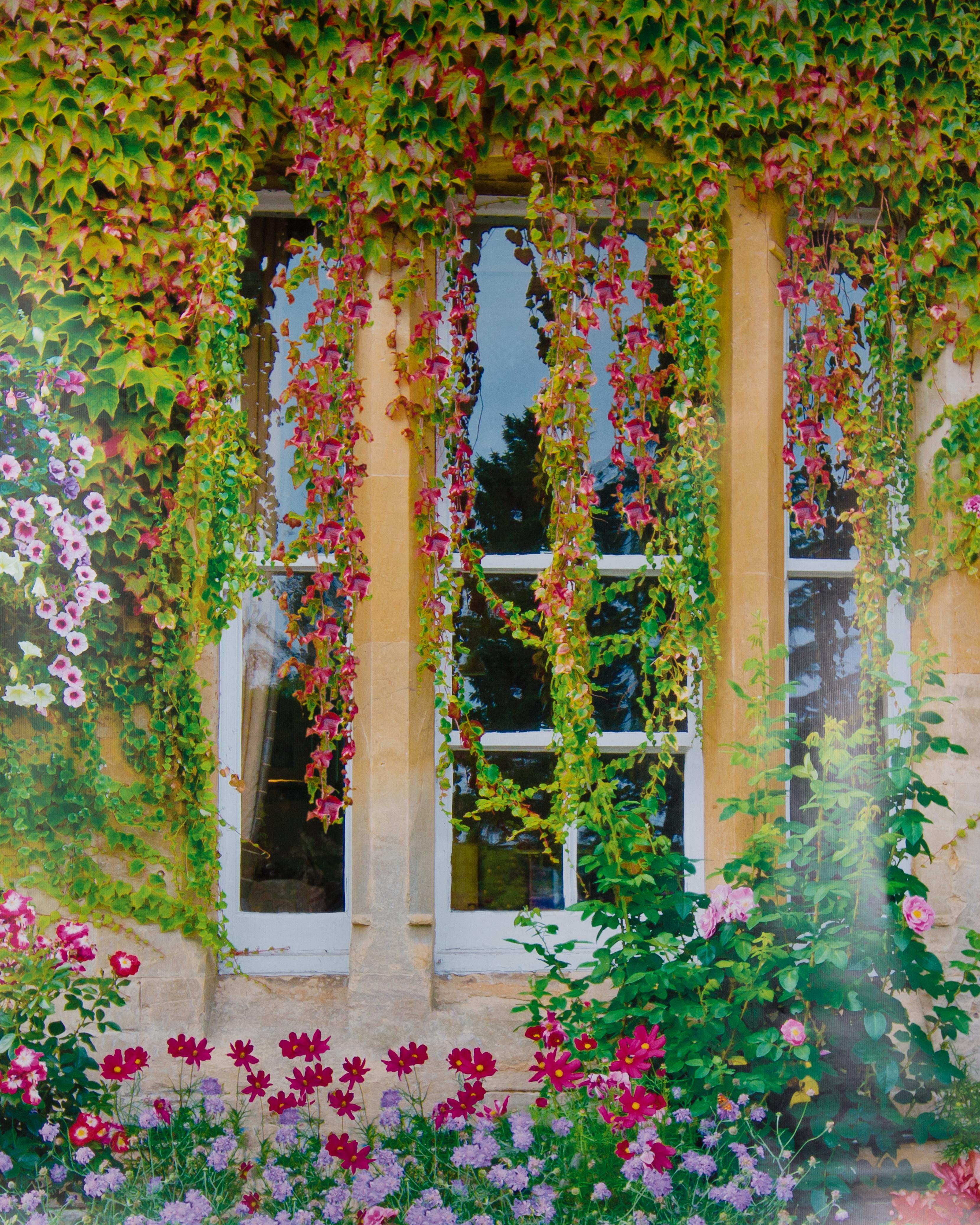 S-13 Garden Window