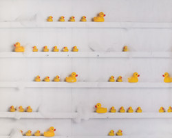 F-4 Rubber Ducky Shelves