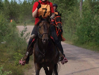 Glushu for Endurance Riding