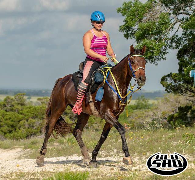 endurance riding in Glushu glue on horse shoes