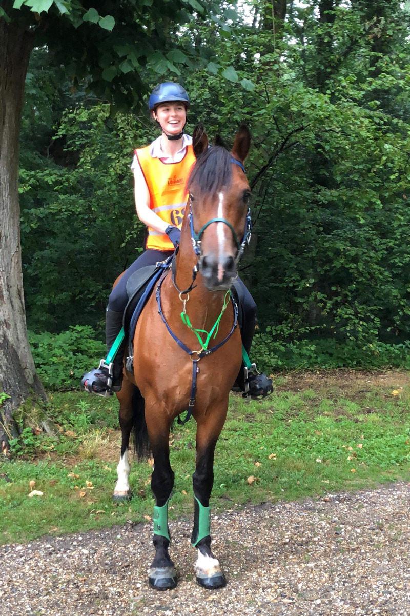 Glushu glue on horse shoes for endurance riding