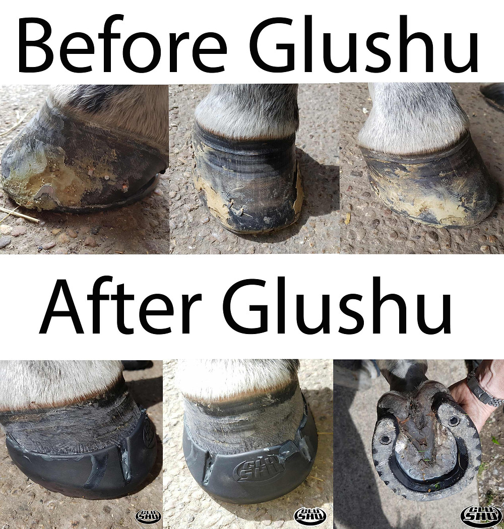 before and after Glushu