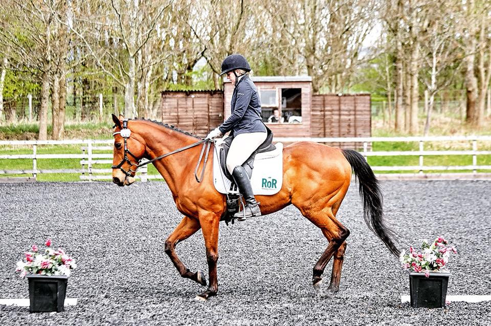 Dressage competition in Glushu glue on horse shoes