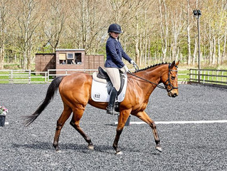 Glushu for Affiliated Dressage.